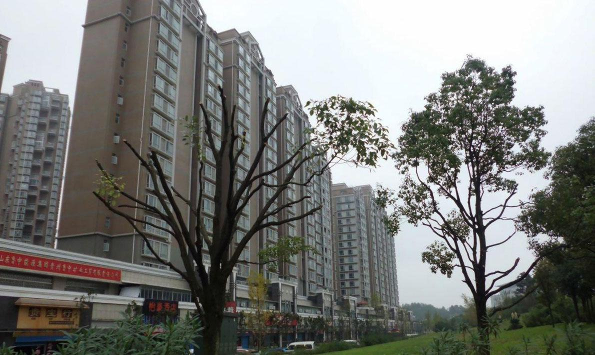 金元国际新城